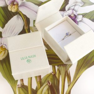 Lilia Nash Jewellery Box